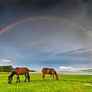 Rainbow Horses Art Print