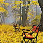 Red Benches In The Park Art Print by Jaroslaw Grudzinski