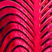 Red Ribs Art Print