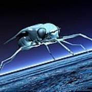 Robotic Fly, Artwork Art Print