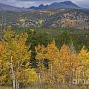 Rocky Mountain Autumn View Art Print