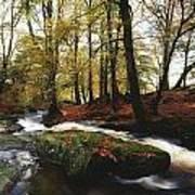 Sally Gap, County Wicklow, Ireland Art Print