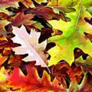 Simple Background From Autumn Leaves Art Print