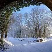 Snow Through The Bridge Art Print