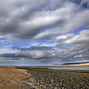 Taw Torridge Estuary Art Print