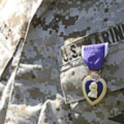 The Purple Heart Award Hangs Art Print