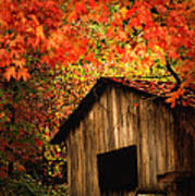 The Wood Shed  Art Print