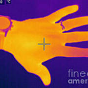 Thermogram Of A Hand Art Print