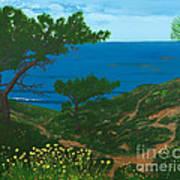 Torrey Pines Trails Art Print