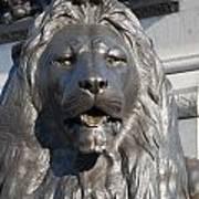 Trafalgar Square Lion Art Print