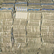 Us Cash Bundles Art Print by Adam Crowley