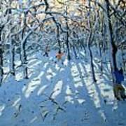 Winter Woodland Near Newhaven Derbyshire Art Print