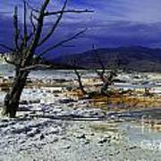 Yellowstone National Park 6 Art Print