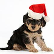 Yorkipoo Pup Wearing Christmas Hat Art Print
