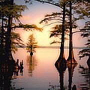 Reelfoot Lake Art Print
