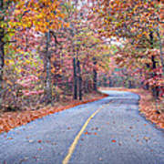 1010-4486 Petit Jean Autumn Highway Art Print by Randy Forrester