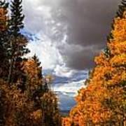 Rocky Mountain Fall Art Print