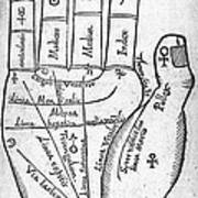 17th Century Palmistry Diagram Print by Middle Temple Library