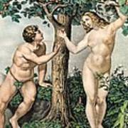 1863 Adam And Eve From Zoology Textbook Art Print