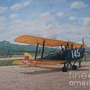 1930's Tiger Moth Aircraft - Aeronave Forca Aerea Portuguesa Art Print