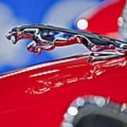 1961 Jaguar Kougar Hood Ornament 2 Art Print