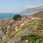 Along Big Sur Art Print