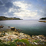 Atlantic Coast In Newfoundland Art Print