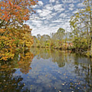 Autumn Colors On The Delaware And Raritan Canal Art Print