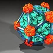 Bacteriophage Alpha 3, Artwork Art Print