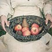 Basket With Fruits Art Print