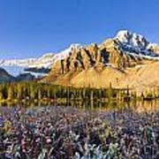 Bow Lake And Crowfoot Mountain Art Print