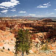 Bryce Canyon Amphitheater Art Print