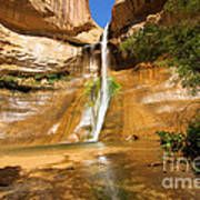 Calf Creek Falls Canyon Art Print