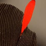 Cedar Waxwing Feather Art Print