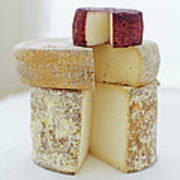 Cheese Selection Art Print