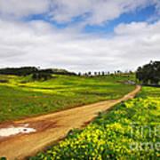 Countryside Landscape Art Print
