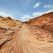 Coyote Buttes Art Print