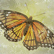 Designer Butterfly Collection Art Print