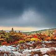 Dolly Sods Wilderness Art Print
