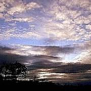 Evening Skies Art Print