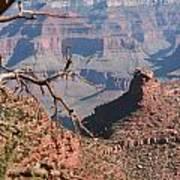 Grand Canyon National Park Usa Arizona Art Print