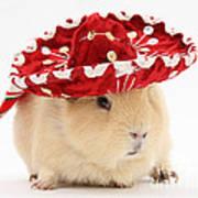 Guinea Pig Wearing A Hat Art Print