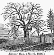Hartford: Charter Oak Art Print