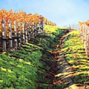 Late Autumn In Napa Valley Art Print