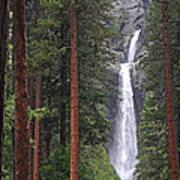 Lower Yosemite Falls Art Print