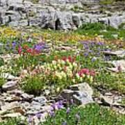 Mother Nature's Master Garden Art Print