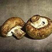 2 Mushrooms Art Print