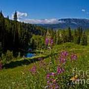 Ohio Creek Valley Colorado Art Print