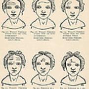 Physiognomy Art Print