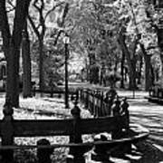 Scenes From Central Park Art Print